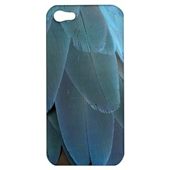 Feather Plumage Blue Parrot Apple Iphone 5 Hardshell Case by Nexatart