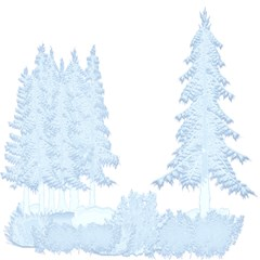 Winter Snow Trees Forest Magic Photo Cubes