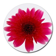 Flower Isolated Transparent Blossom Round Mousepads by Nexatart