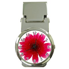 Flower Isolated Transparent Blossom Money Clip Watches by Nexatart