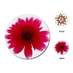 Flower Isolated Transparent Blossom Playing Cards (round)  by Nexatart