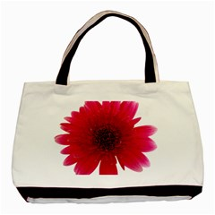 Flower Isolated Transparent Blossom Basic Tote Bag (two Sides) by Nexatart