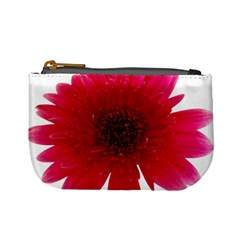 Flower Isolated Transparent Blossom Mini Coin Purses