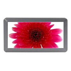 Flower Isolated Transparent Blossom Memory Card Reader (mini)
