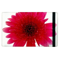 Flower Isolated Transparent Blossom Apple Ipad 2 Flip Case by Nexatart