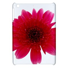 Flower Isolated Transparent Blossom Apple Ipad Mini Hardshell Case by Nexatart