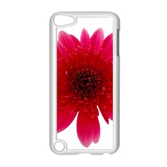 Flower Isolated Transparent Blossom Apple Ipod Touch 5 Case (white) by Nexatart