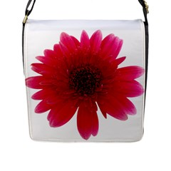Flower Isolated Transparent Blossom Flap Messenger Bag (l)  by Nexatart