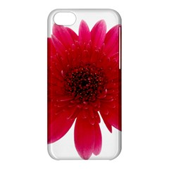 Flower Isolated Transparent Blossom Apple Iphone 5c Hardshell Case by Nexatart