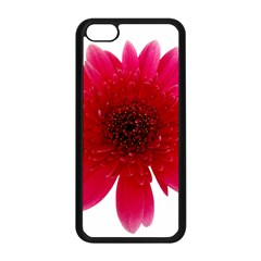 Flower Isolated Transparent Blossom Apple Iphone 5c Seamless Case (black) by Nexatart