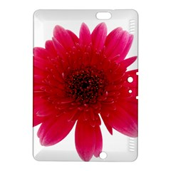 Flower Isolated Transparent Blossom Kindle Fire HDX 8.9  Hardshell Case by Nexatart
