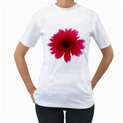 Flower Isolated Transparent Blossom Women s T Shirt (white)