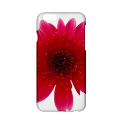 Flower Isolated Transparent Blossom Apple Iphone 6/6s Hardshell Case by Nexatart