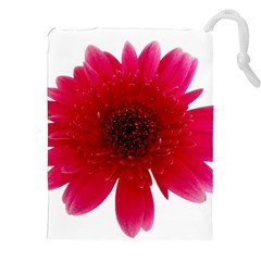 Flower Isolated Transparent Blossom Drawstring Pouches (xxl) by Nexatart
