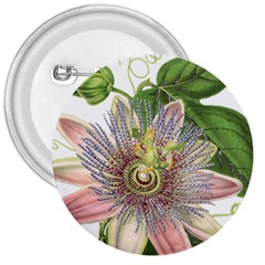 Passion Flower Flower Plant Blossom 3  Buttons by Nexatart