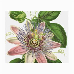 Passion Flower Flower Plant Blossom Small Glasses Cloth (2 Side) by Nexatart