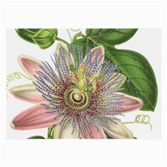 Passion Flower Flower Plant Blossom Large Glasses Cloth (2 Side) by Nexatart
