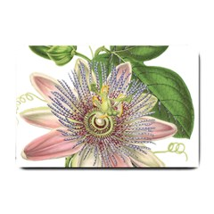 Passion Flower Flower Plant Blossom Small Doormat  by Nexatart