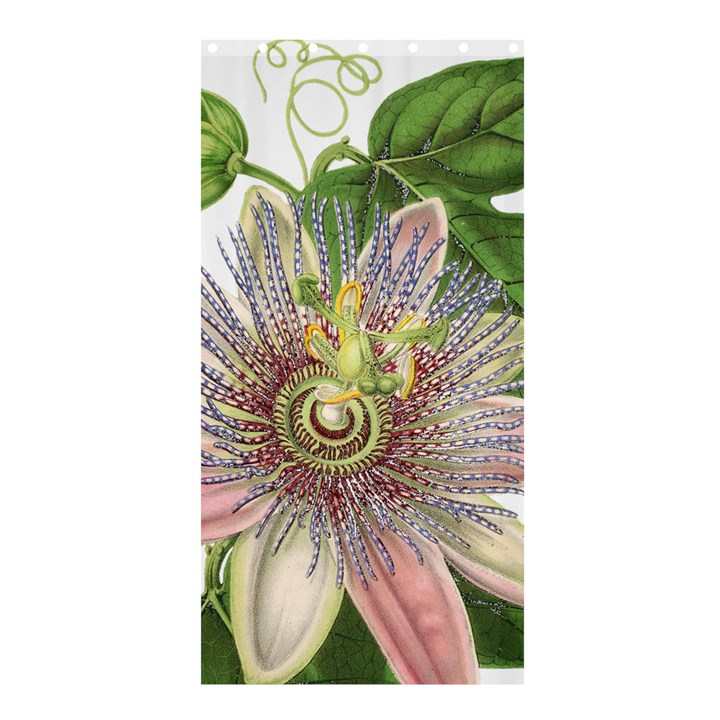 Passion Flower Flower Plant Blossom Shower Curtain 36  x 72  (Stall)
