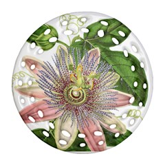 Passion Flower Flower Plant Blossom Round Filigree Ornament (two Sides) by Nexatart