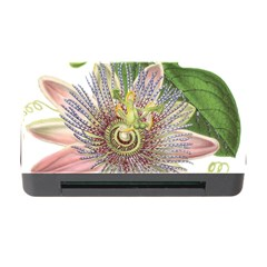 Passion Flower Flower Plant Blossom Memory Card Reader With Cf by Nexatart