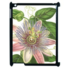 Passion Flower Flower Plant Blossom Apple Ipad 2 Case (black) by Nexatart