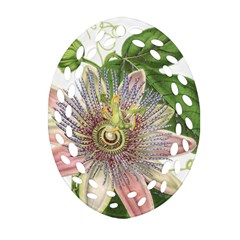 Passion Flower Flower Plant Blossom Oval Filigree Ornament (two Sides) by Nexatart