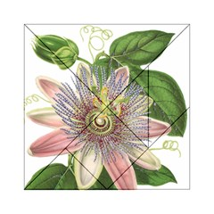 Passion Flower Flower Plant Blossom Acrylic Tangram Puzzle (6  X 6 ) by Nexatart