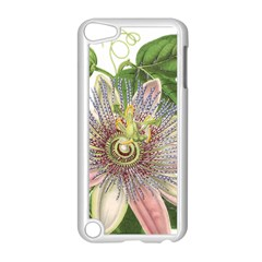 Passion Flower Flower Plant Blossom Apple Ipod Touch 5 Case (white) by Nexatart