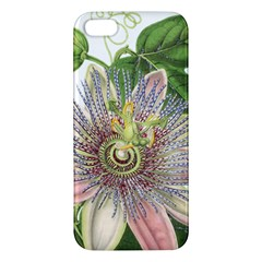Passion Flower Flower Plant Blossom Apple Iphone 5 Premium Hardshell Case