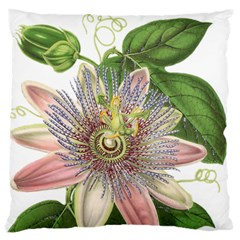 Passion Flower Flower Plant Blossom Large Flano Cushion Case (one Side)