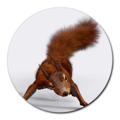 Squirrel Wild Animal Animal World Round Mousepads