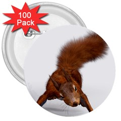 Squirrel Wild Animal Animal World 3  Buttons (100 Pack)