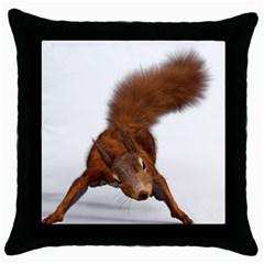 Squirrel Wild Animal Animal World Throw Pillow Case (black) by Nexatart