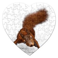 Squirrel Wild Animal Animal World Jigsaw Puzzle (heart) by Nexatart
