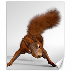 Squirrel Wild Animal Animal World Canvas 8  X 10
