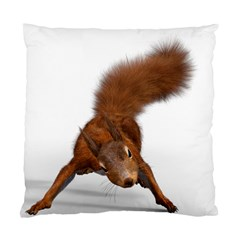 Squirrel Wild Animal Animal World Standard Cushion Case (two Sides) by Nexatart