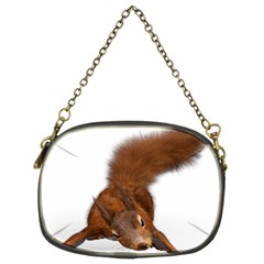 Squirrel Wild Animal Animal World Chain Purses (two Sides)