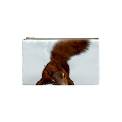 Squirrel Wild Animal Animal World Cosmetic Bag (small)  by Nexatart