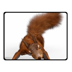 Squirrel Wild Animal Animal World Fleece Blanket (small)