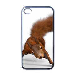 Squirrel Wild Animal Animal World Apple Iphone 4 Case (black)