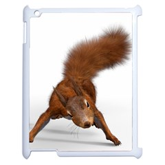 Squirrel Wild Animal Animal World Apple Ipad 2 Case (white)