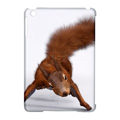 Squirrel Wild Animal Animal World Apple Ipad Mini Hardshell Case (compatible With Smart Cover) by Nexatart