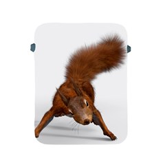 Squirrel Wild Animal Animal World Apple Ipad 2/3/4 Protective Soft Cases by Nexatart