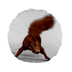 Squirrel Wild Animal Animal World Standard 15  Premium Flano Round Cushions by Nexatart