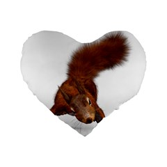 Squirrel Wild Animal Animal World Standard 16  Premium Flano Heart Shape Cushions by Nexatart