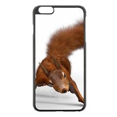 Squirrel Wild Animal Animal World Apple Iphone 6 Plus/6s Plus Black Enamel Case by Nexatart