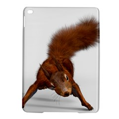 Squirrel Wild Animal Animal World Ipad Air 2 Hardshell Cases by Nexatart