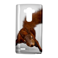 Squirrel Wild Animal Animal World Lg G4 Hardshell Case by Nexatart