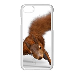 Squirrel Wild Animal Animal World Apple Iphone 7 Seamless Case (white) by Nexatart